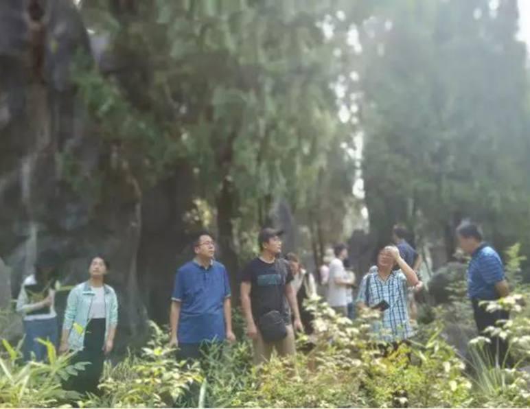 李先锋陪同专家组进行全域旅游基地建设调研